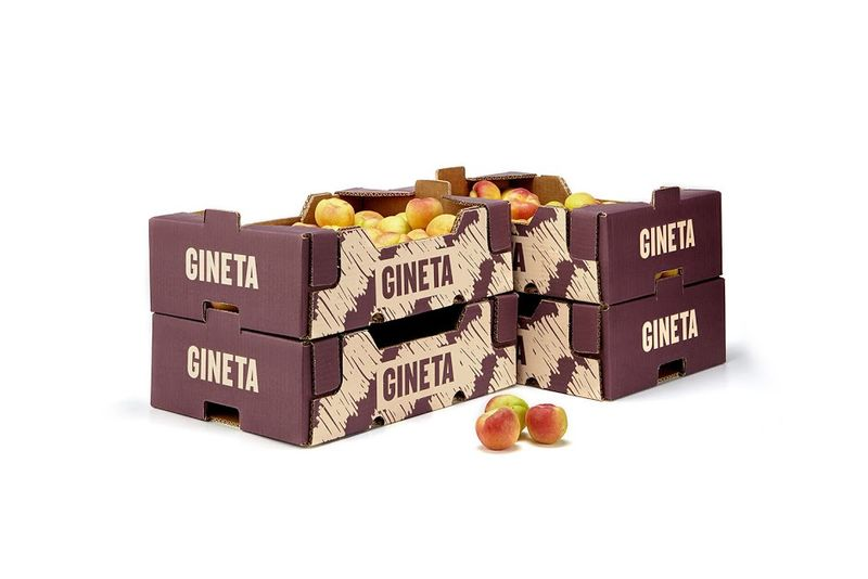 High-Fashion Fruit Boxes