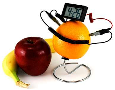 Fruit Powered Electronics