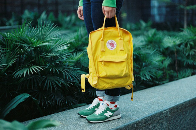 Colorfully Functional Knapsacks