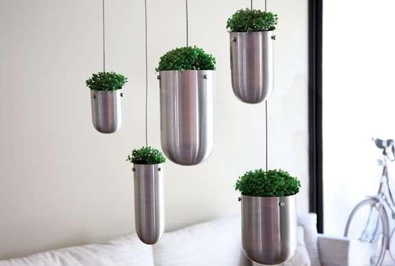 Hanging Botanical Adornments