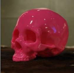 Fuchsia Skulls