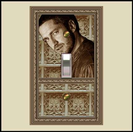 Celebrity Light Switches