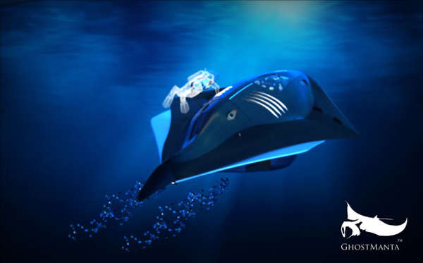 Streamlined Stingray Submarines