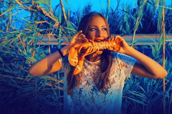 Lobster-Loving Flamenco Captures