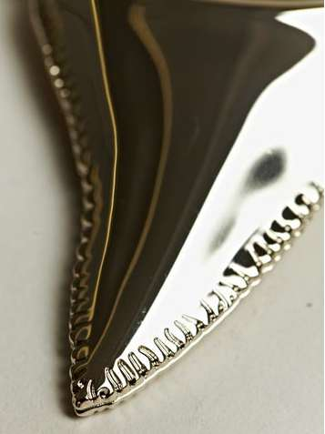 givenchy shark tooth necklace2