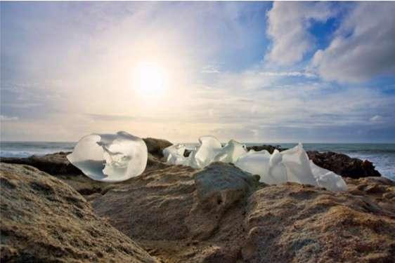 Plastic Bag Photography