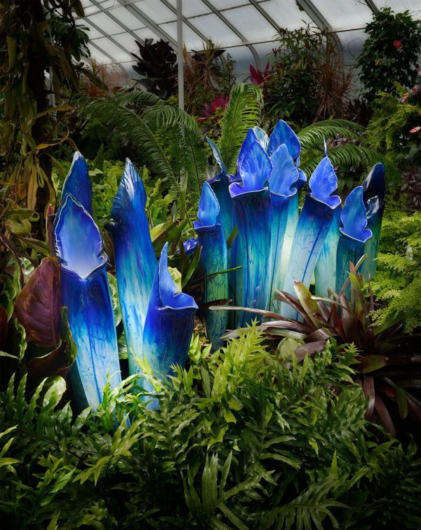 Gigantic Glass Flowers