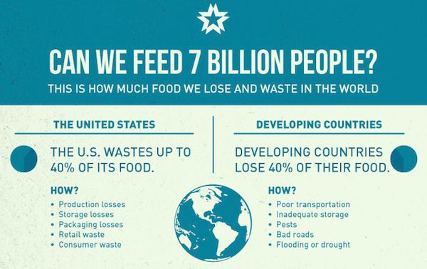 Food Crisis Charts