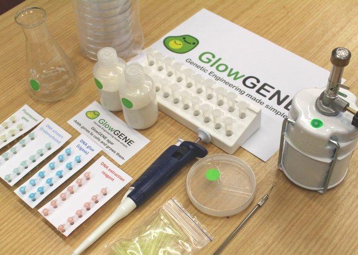 DNA-Splicing Kits