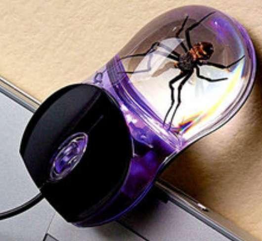 Arachnoid Computer Accessories