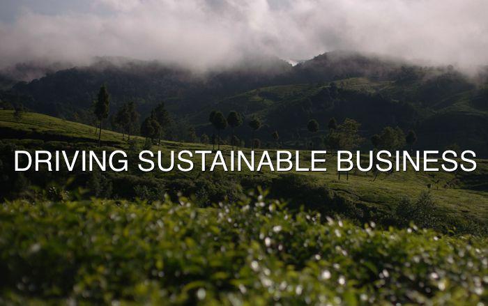 Sustainable Business Incubators