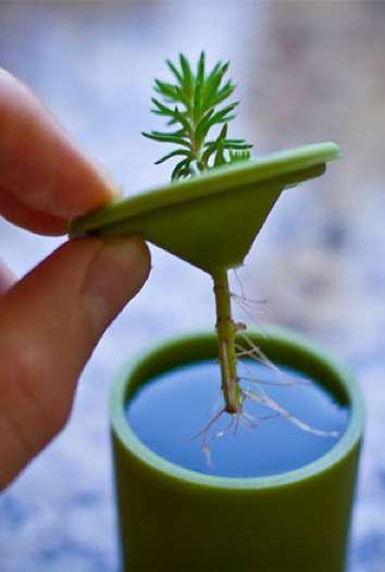 Twig-Fostering Flower Pots