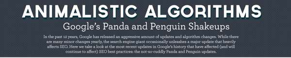 google panda changes affect SEO