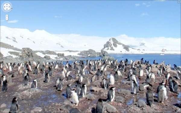 South Pole Street Views