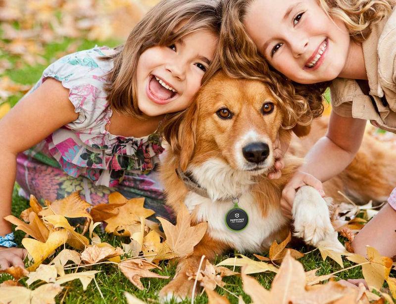 Social Pet Locators