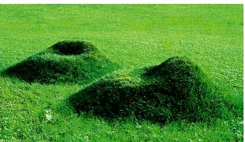 DIY Grass Chairs