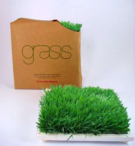 Grass in a Box