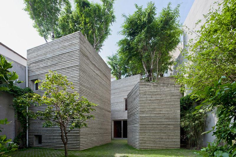 Tree-Focused Architecture
