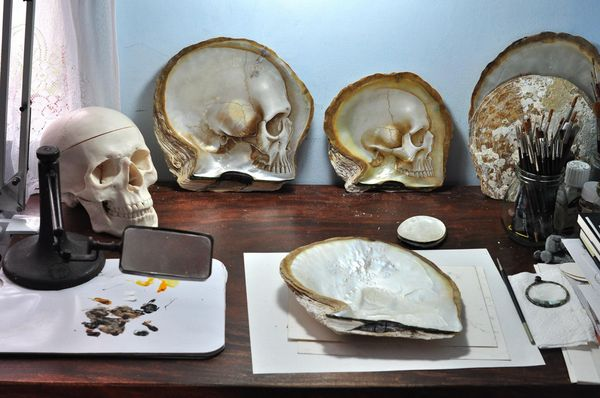 Shell Skull Carvings