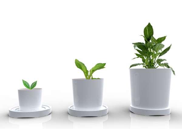 Enlarging Plant Pots