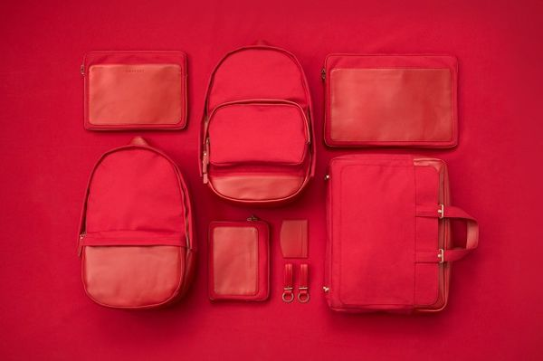 Minimalist Monochromatic Luggage