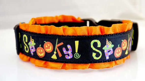 Creepy Canine Collars
