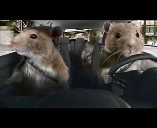 Hamster Wheel Car Ads