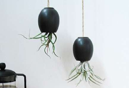 hanging airplant pod