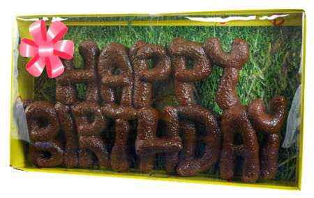 Happy Birthday Dog Poop Cake
