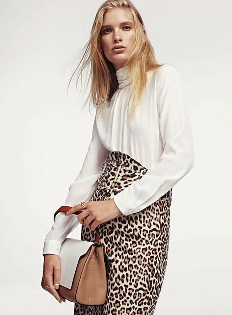 Subdued Animal Print Editorials