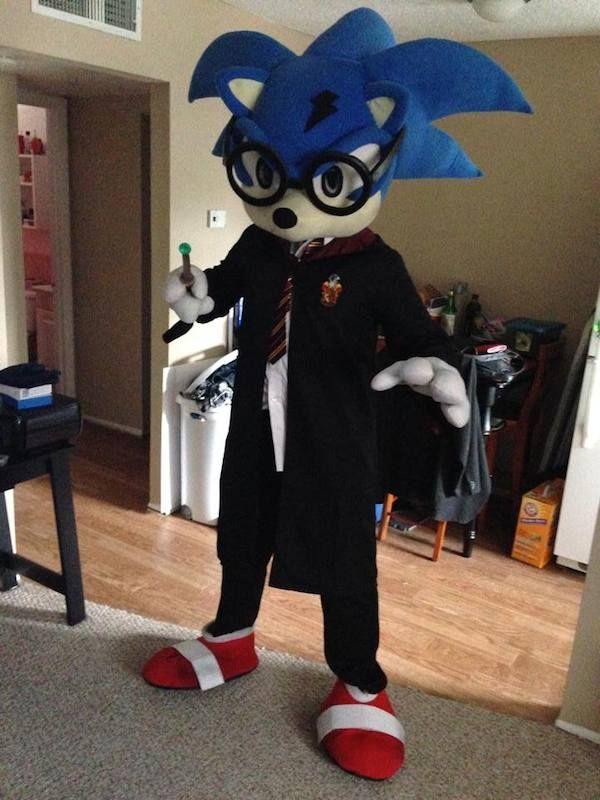 Hybrid Fandom Costumes Harry Potter Sonic
