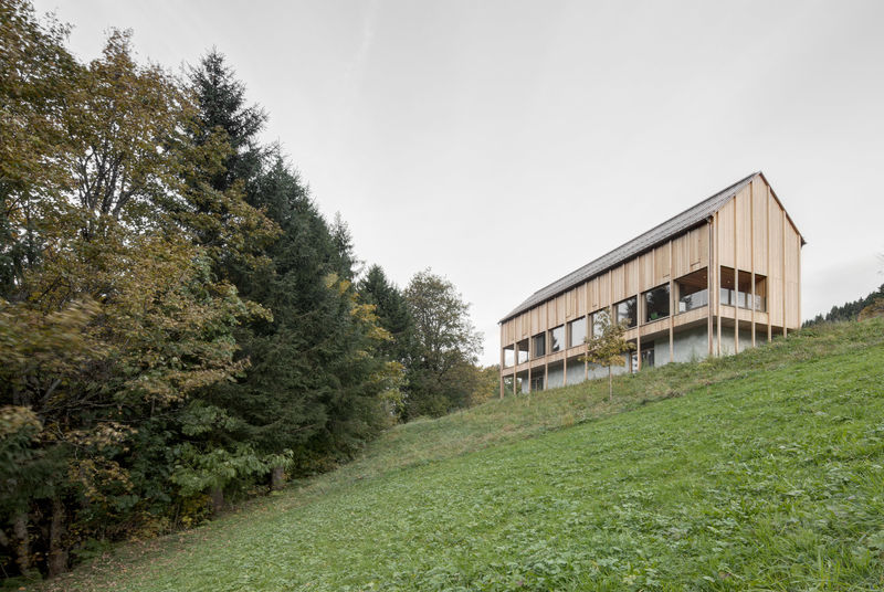 Perched Larch-Clad Homes