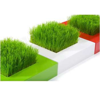 Mondrian Deskscaping Haute Culture Mini Garden Puts a Square of