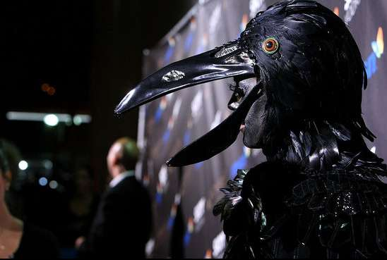 Crow Halloween Costume