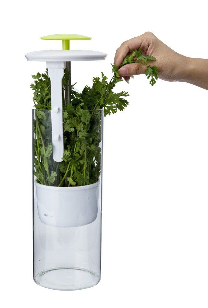 Freshness-Increasing Herb Holders