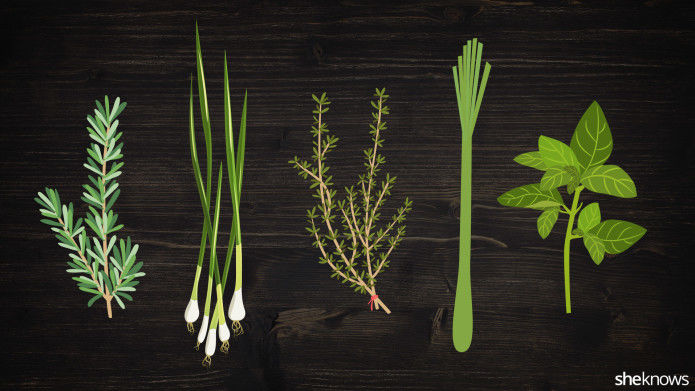 Culinary Herb Guides