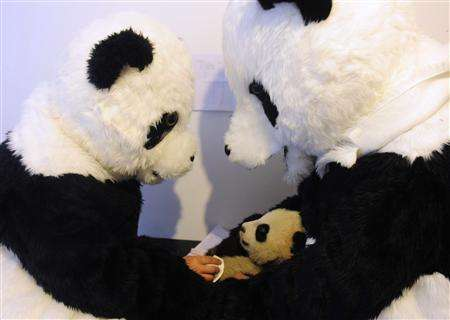 hetaoping panda costume project