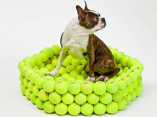 Sporty Pet Nests