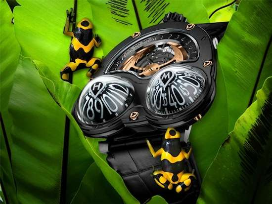 HM3 Frog Watch