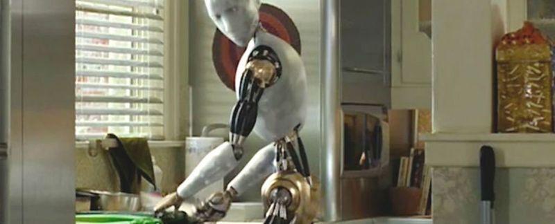 Domesticated Chore Robots