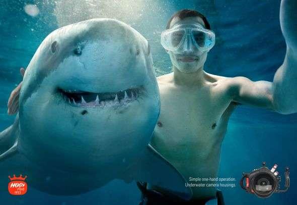 Adventurous Camera Campaigns
