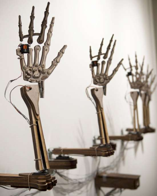 Expressive Skeletal Hand Exhibits