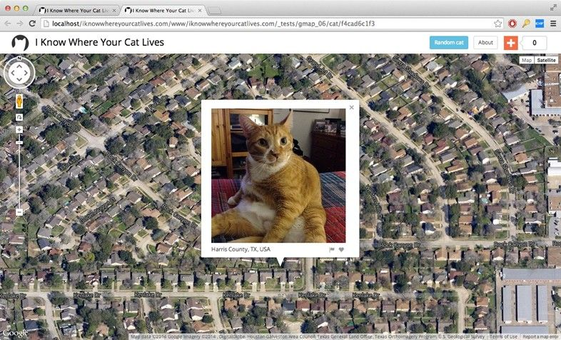 Cat Surveillance Maps