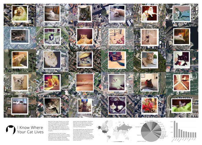 Cat-Stalking Maps