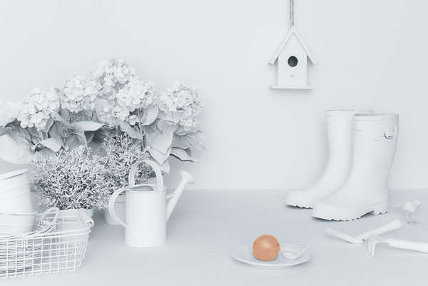 White-Out Clutter Photography