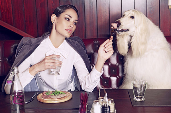 Sophisticated Pet Owner Editorials