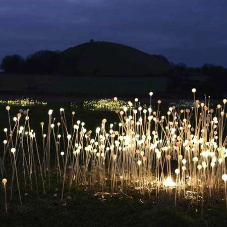 Illuminated Landscapes