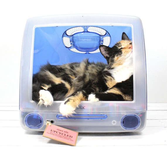 Desktop Cat Cribs