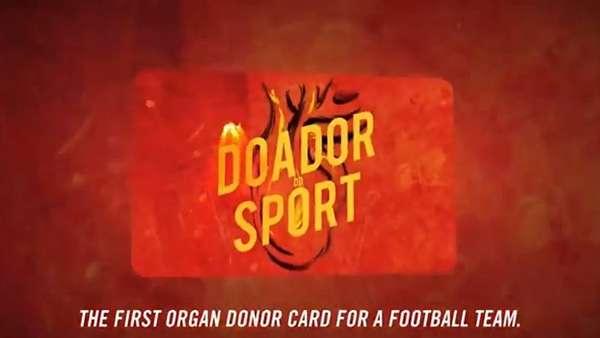 Fan-Immortalizing Donor Campaigns