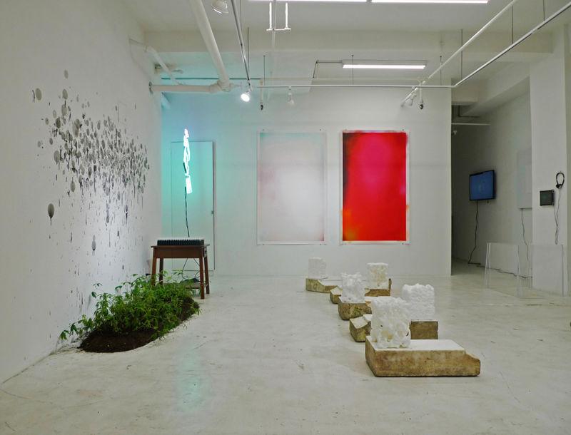 Digitally Sublime Exhibits